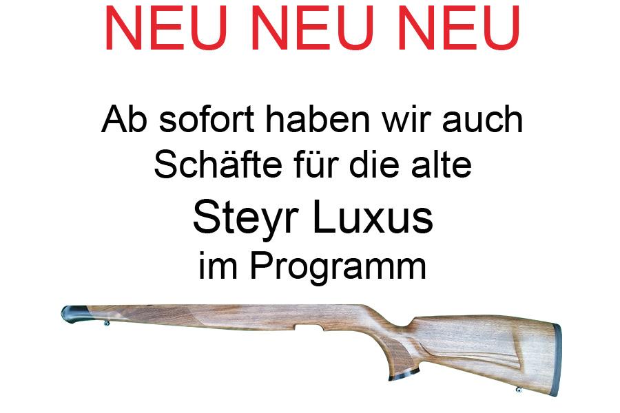 Neu Steyr Luxus